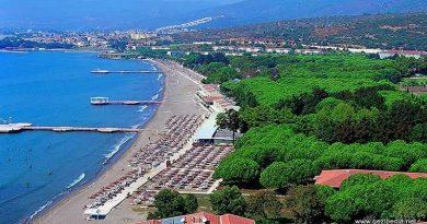 İzmir Menderes Nakliye