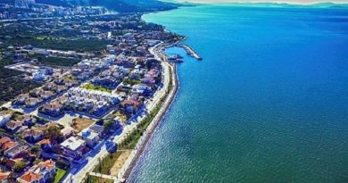 İzmir Narlıdere Nakliye